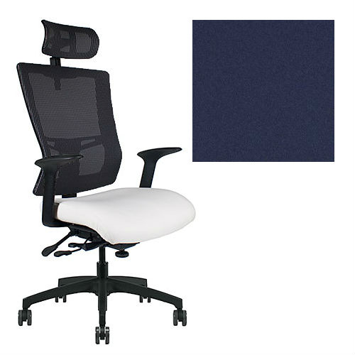 Office Master Affirm Collection AF589 Ergonomic Executive High Back Chair - With Armrests - Black Mesh Back - Grade 1 Fabric - Elements Oxygen Blue 1144 PLUS Free Ergonomics eBook