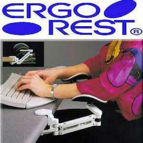 ErgoRest - 330-000-R - ErgoRest Articulating Arm Support - Red - Standard Arm, Standard Pad