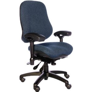 Ergogenesis Chair comfortchannel > ergonomic office chairsergogenesis bodybilt